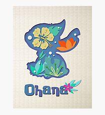 Ohana Silhouette Photographic Print