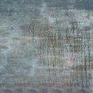Reeds25 by Tom  Reynen