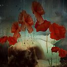 Everyone Loves Poppies, But They Cut the Tall Ones Down by Alison Pearce