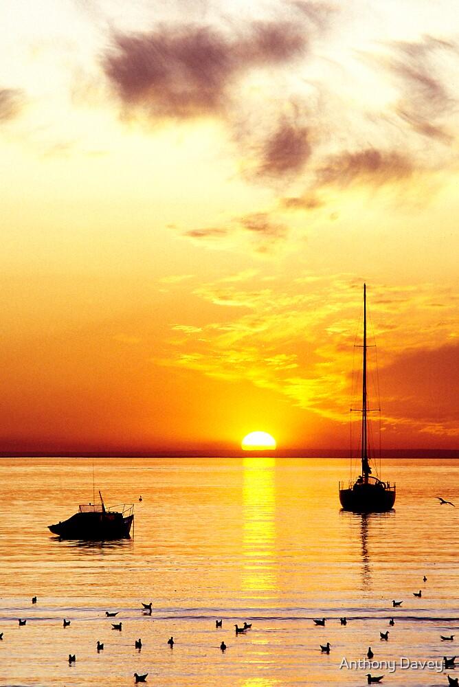 Hampton Sunset by Anthony Davey