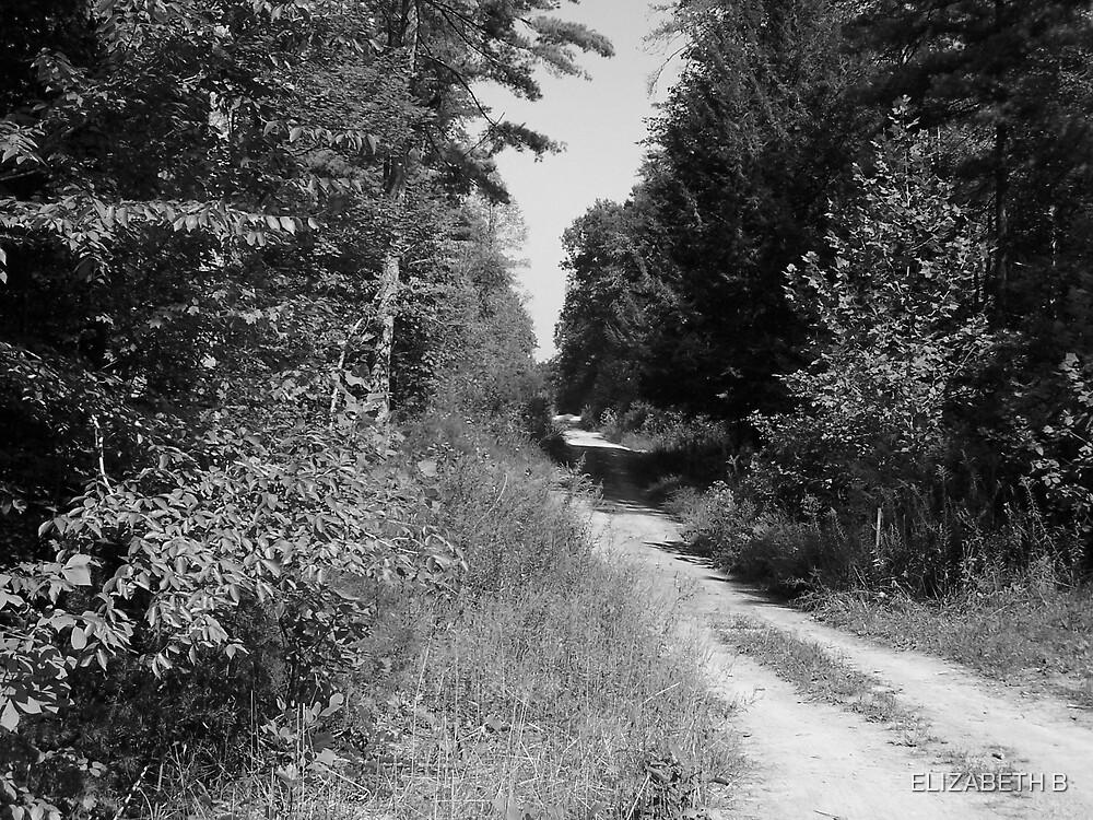 long dirt road by ELIZABETH B