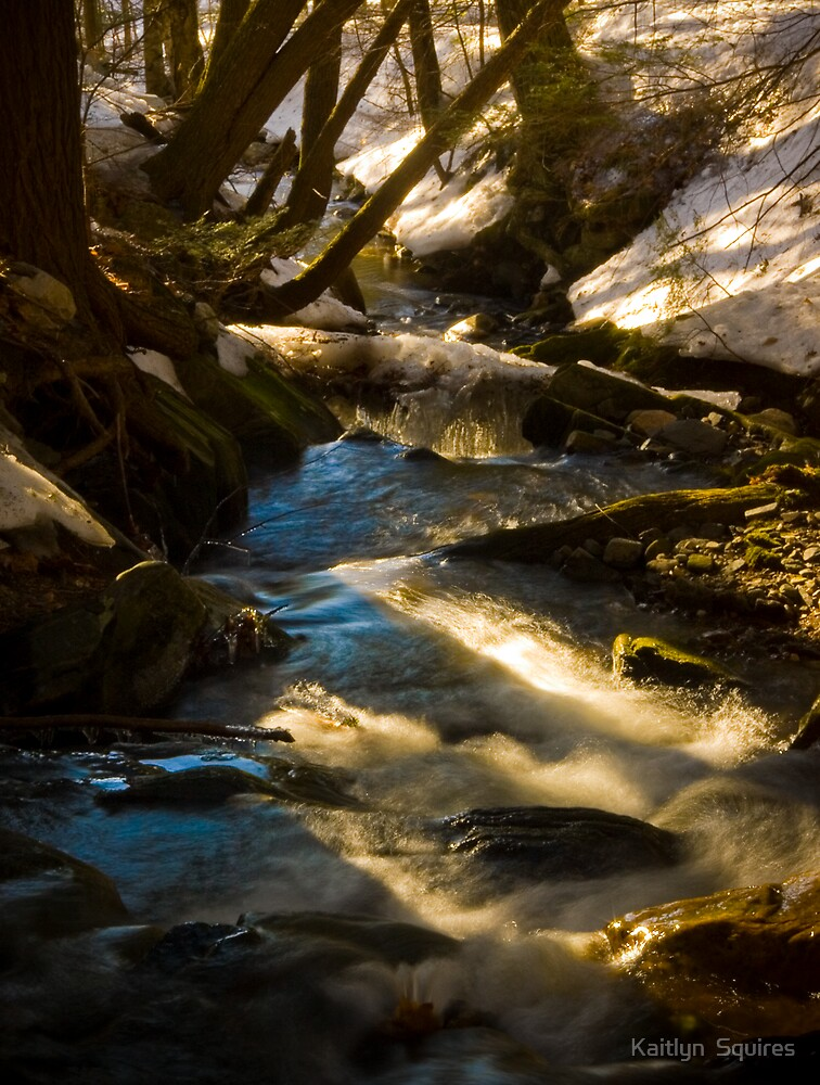 The Flowing sping melt by Kaitlyn  Squires
