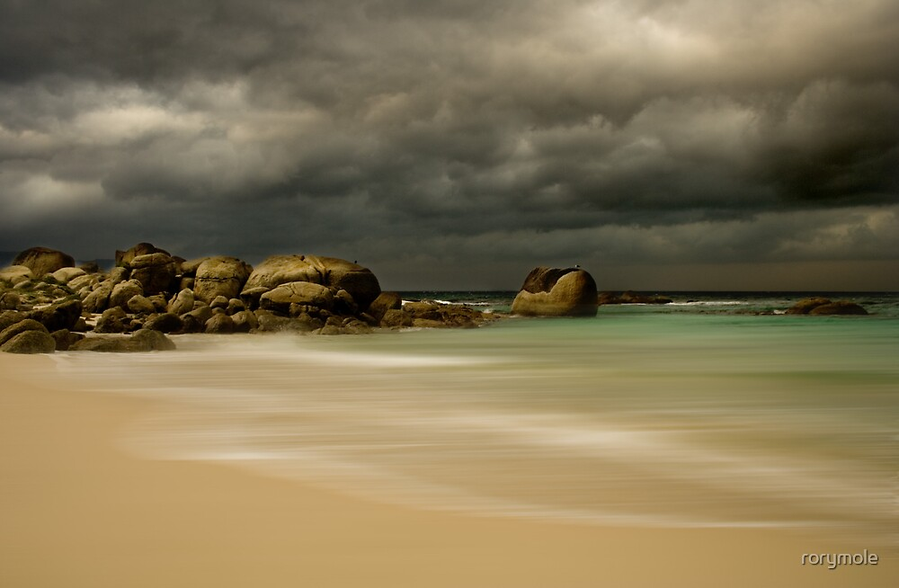Storm coming by rorymole