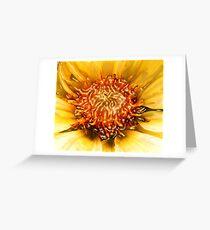 SUN DAHLIA & RIVER ~ ACRYLIC ON CANVAS Greeting Card