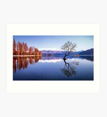 Sunrise at that Wanaka Tree Art Print