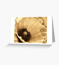 SEPIA COLLECTION ~ POPPY ~ PASTEL AND PENCIL ON CANVAS Greeting Card