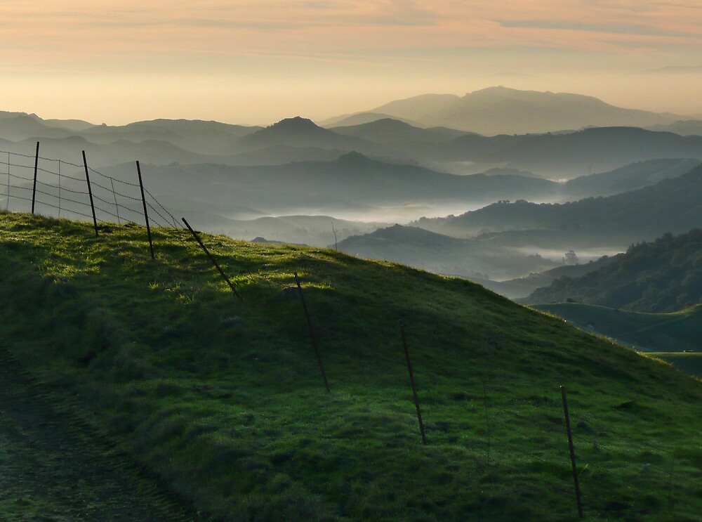 East Bay Hills II by Gary Pope