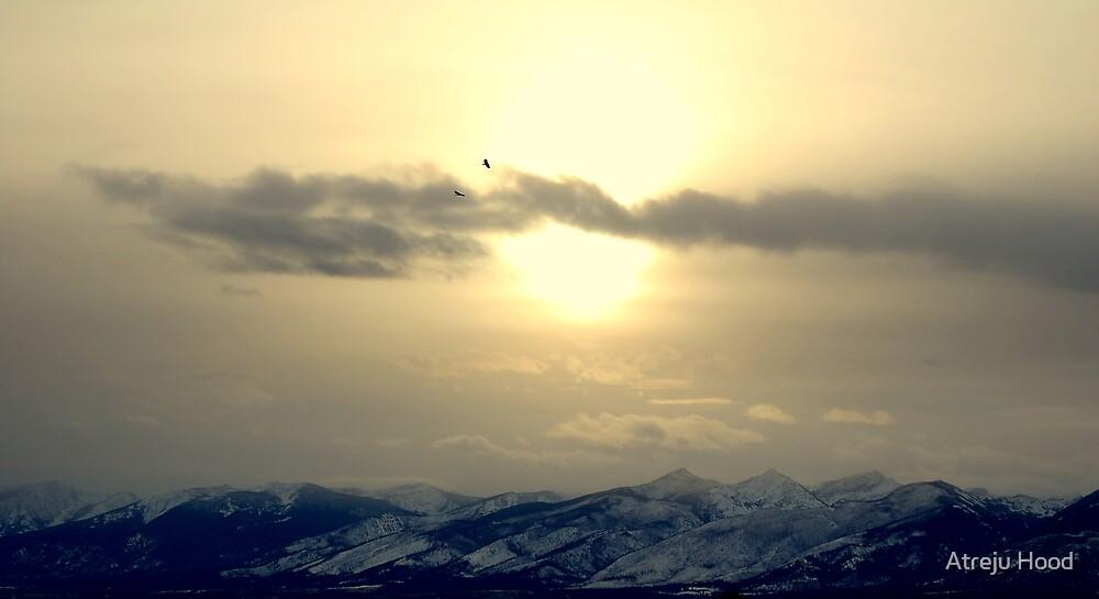 Flying High by Atreju Hood