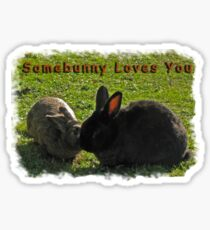 Somebunny Loves You - Tee  Sticker