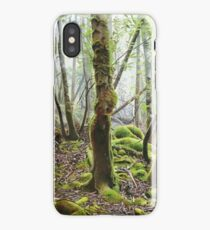Keys to the Forest iPhone Case