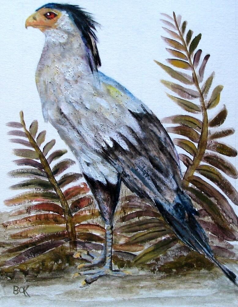 Secretary Bird by Barbarak