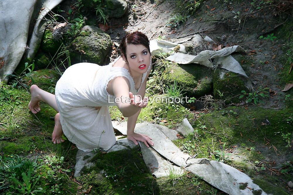 Creek Series by Leta Davenport