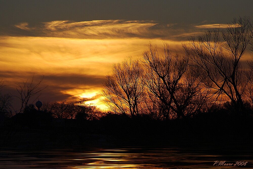 The Calming Force by Pat Moore
