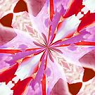 Red and White Tulip Abstract by Marie Sharp