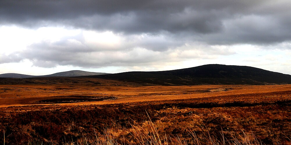 Wicklow Mountains by Cristian  Doolan
