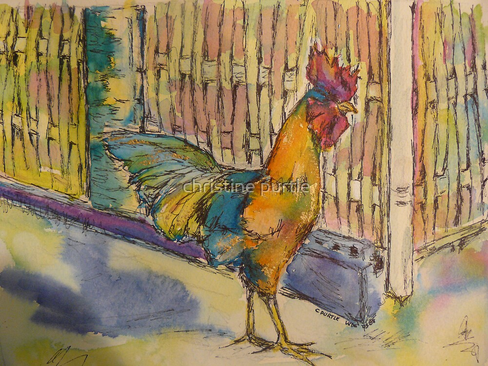 cock of the walk by christine purtle