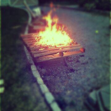pallet lit by cion49