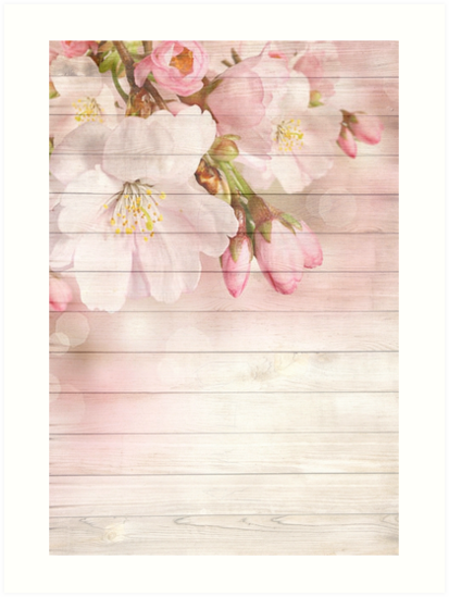 Romantic Vintage Shabby Chic Floral Wood Pink\
