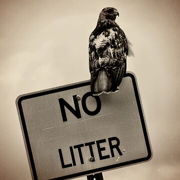 no litter by cion49