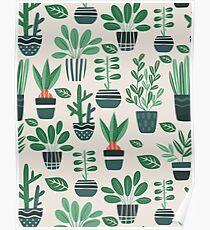 Topfpflanzen Poster