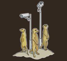 Meerkat CCTV