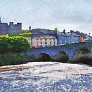 Enniscorthy town & Castle, Co. Wexford, Ireland by David Carton