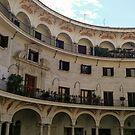 Plaza del Cabildo by Clayton  Turner