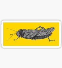 The Grasshopper Sticker