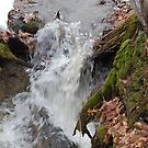 rushing creek by storm22