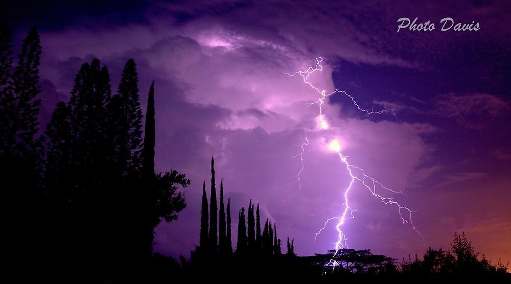 Purple Storm by Gosha Davis