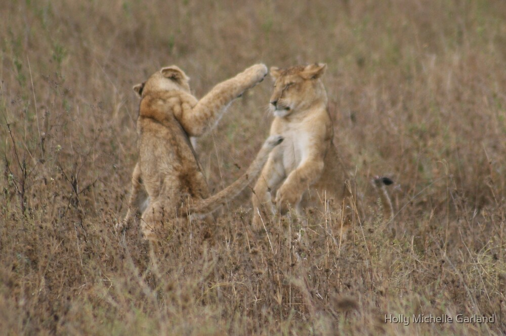 Cubs Playing by Holly Michelle Garland