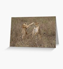 Cubs Playing Greeting Card