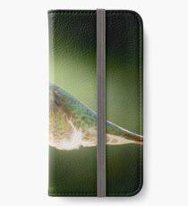 Humming2 061217 iPhone Wallet/Case/Skin