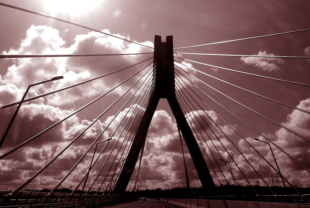 Boyne Bridge ... on the road to Dublin ... by SNAPPYDAVE
