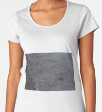 Freezing Over Women's Premium T-Shirt