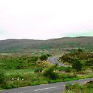 Winding Road in Donegal, Ireland by Shulie1