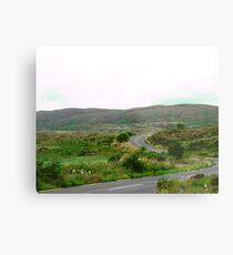 Winding Road in Donegal, Ireland Metal Print
