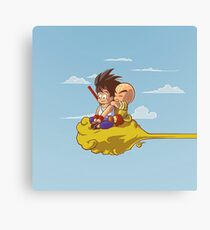 fly fly and fly Canvas Print