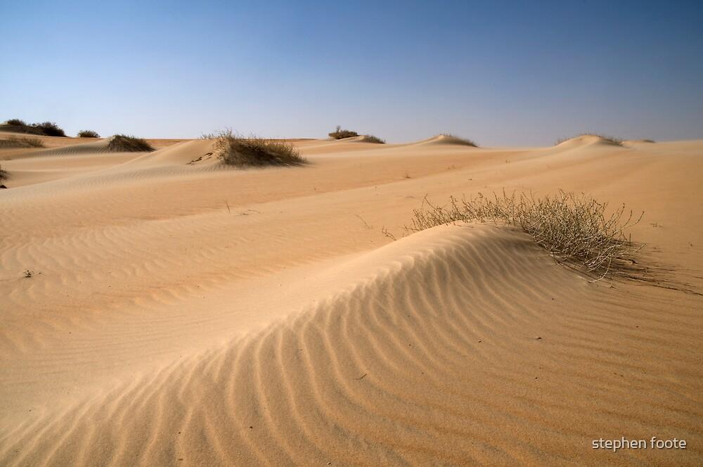 Desert Sands by stephen foote