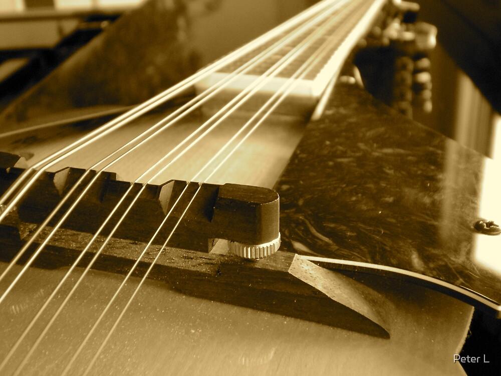 Mandolin by Peter L