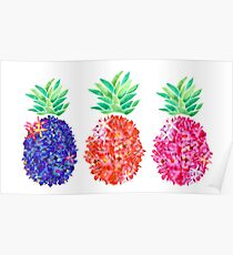 Floral Pineapples Poster
