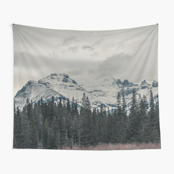 IN THE MOUNTAINS MODERN PRINTING 1 Pc #26854318 Tapestry