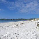 Omaha Beach......New Zealand ! by Roy  Massicks