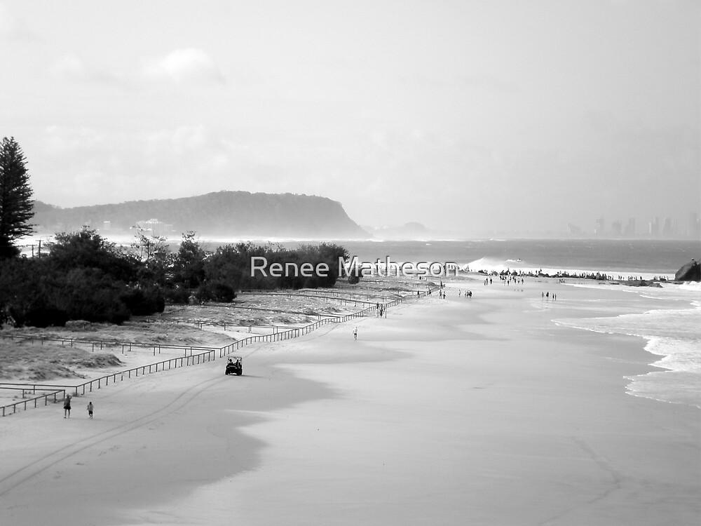 Palm Beach by Renee Matheson