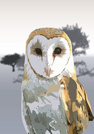 Barn Owl by Adam Santana