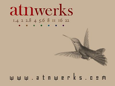 the atn huming bird at werk by atnwerks