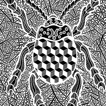 geometric beetle 4 by SeanFoor