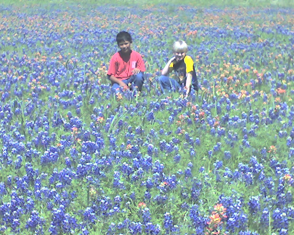 The Boys in Texas Wildflowers  by Tom Sieger