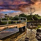Bridge to Nowhere by Philip James Filia