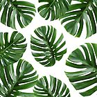 Live and Love // Tropical Leaves on White by hocapontas